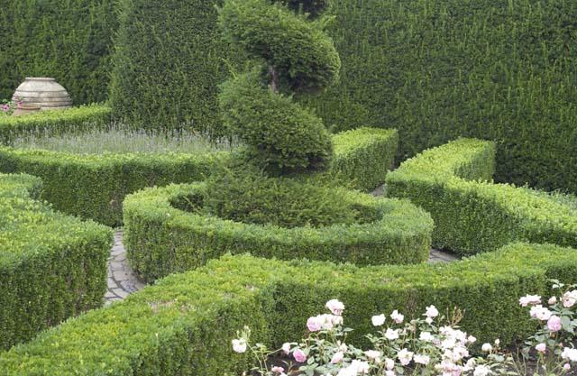 Ein kleiner formaler Garten aus Buchsbaum.